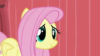 Fluttershy coming to the stage S02E19