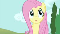 Fluttershy walks to Twilight and Rainbow S4E21