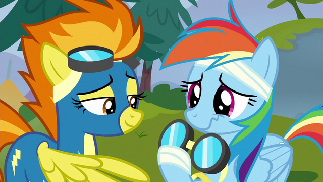 File:Spitfire gives Rainbow her goggles back S6E7.png
