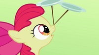 Apple Bloom looking at two plates on nose S2E06