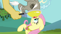 Discord eyes Fluttershy through magnifying glass S03E10