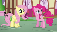 "Pinkie ""but smaller"" S5E19"