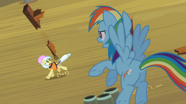 File:Rainbow Dash Helping Ambrosia S2E08.png