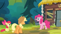Pinkie Pie 'Oh, that's perfect!' S4E09