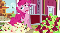 Pinkie Pie groaning with exhaustion S5E24