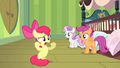 "Apple Bloom ""without Applejack hoverin' over me!"" S4E17.png"