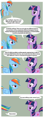 Rainbow Dash tells a joke