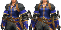 Blue Guild Guard Armor 2