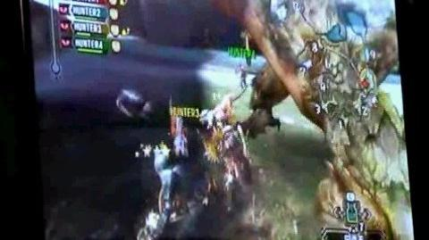 Monster Hunter 3 Tri - Rathian and Qurupecco in Action