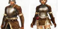 Leather Armor (Both) MHFU