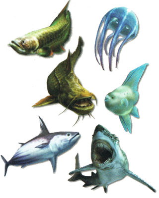 MH3-Fishes