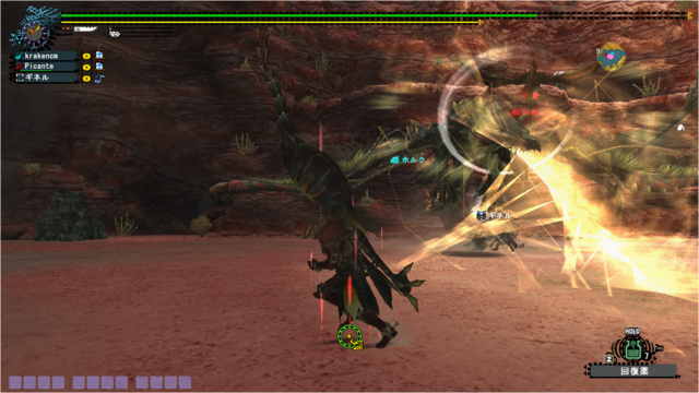 File:Me and picante VS hr81 beru lightning attack ^o^.png