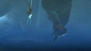 MH Sunfish 2