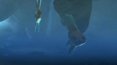 File:MH Sunfish 2.jpg