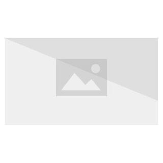 Der Phoenix wurde wiedererweckt