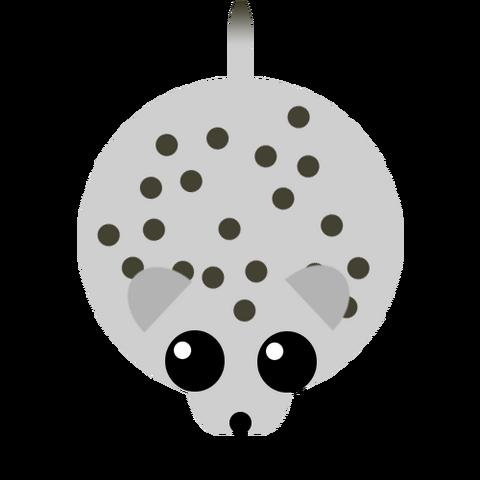 File:Snowleopard.png