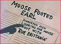 Mosse foot