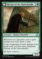 Hermit of the Natterknolls SOI