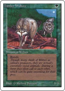 Timber Wolves 2U