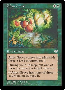Afiya Grove MIR