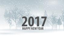 Happy 2017 New