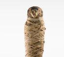 Horus (Nicholson Museum)