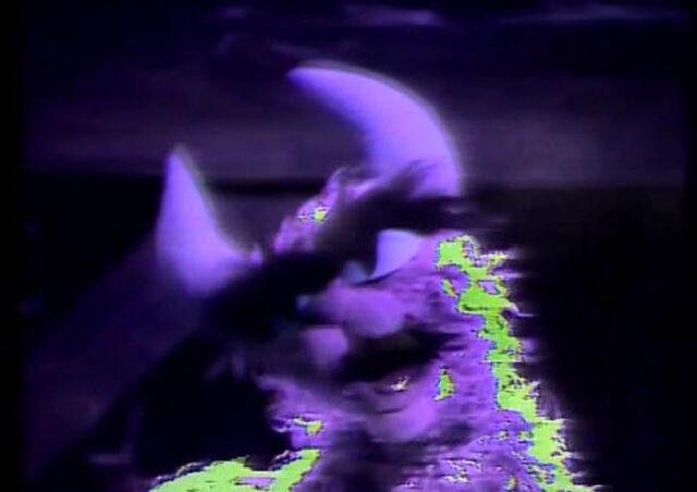 File:Catgut swamp.JPG