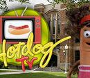 Hotdog TV