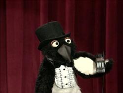 Sheckypenguin