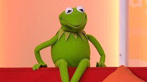 KermittheFrog-Daybreak-ITV-(10.02.2012)
