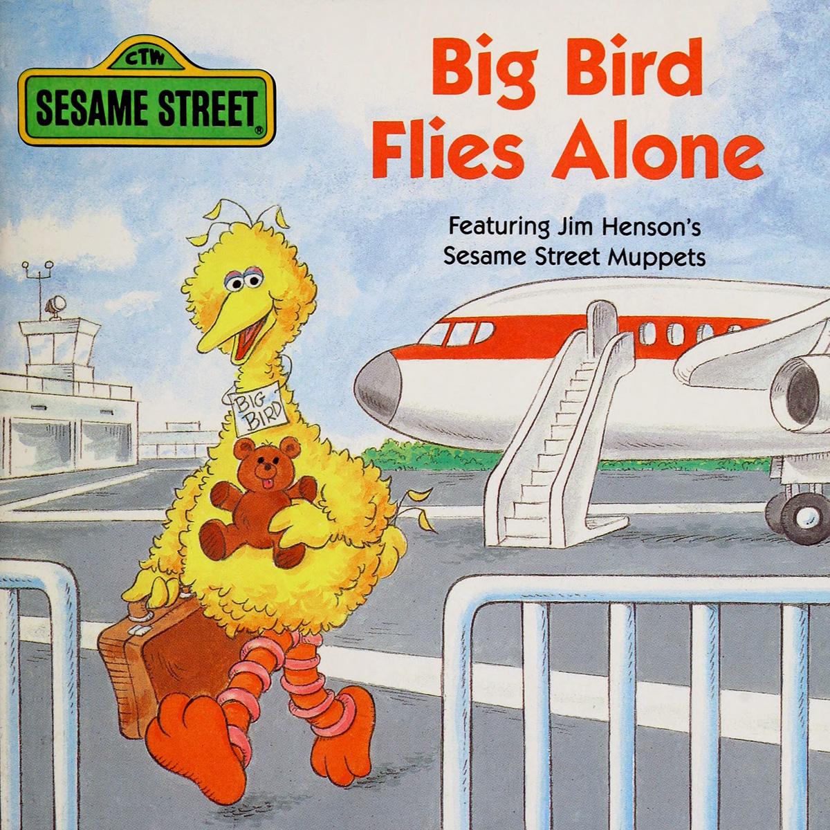 Book.bigbirdfliesalone