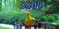 Episode 3809