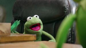 Robin in Kermit's office
