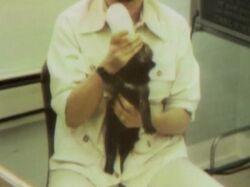 1257-Animals