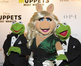 Muppets-Most-Wanted UK-Premiere 014