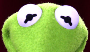 Kermit-Eyes