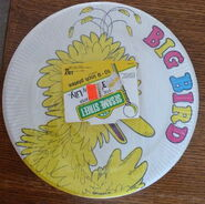 Lily party supplies sesame street plates
