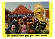 1992 sesame trading cards 50