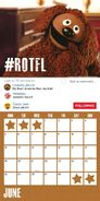 Muppet 2017 Calendar Danilo June