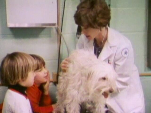 File:Animaldoctor.jpg