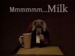 DogMilk
