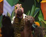 Episode 112: Sea Otter & Vulture