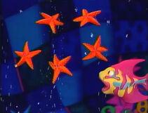 Rainbowfish.5