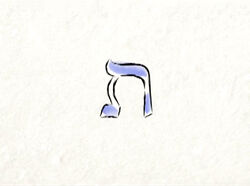 Shalom20g