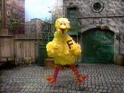 BigBird.Fast