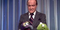 Actors that appear on multiple Muppet TV shows