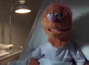 Scrubs-muppet