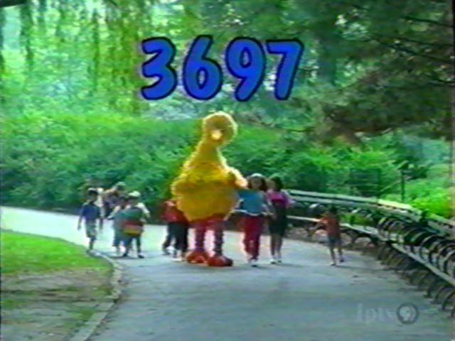 3697rerun.jpg