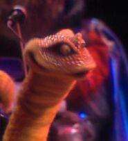 Howard Snake