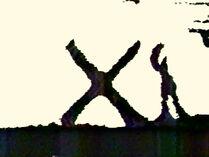 SandX